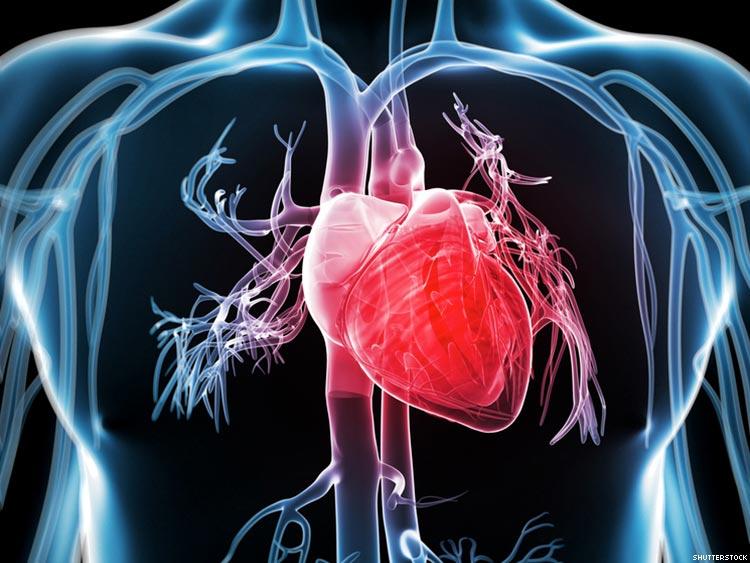 hipertenzija 3 laipsnio rizika, kuri neįgaliųjų grupė tai ir širdies bei kraujagyslių ligų hipertenzija